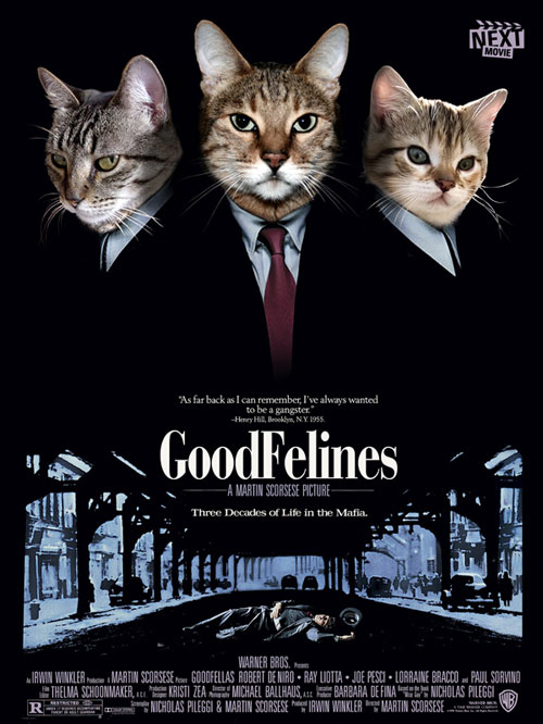 Famous Black Cats In Movies