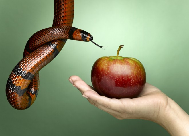 http://ibankcoin.com/chessnwine/files/2014/05/Jeffrey-Coolidge-female-hand-holding-apple-with-snake-eve-Getty-Images-Stone-83903036-e1368194108842.jpg