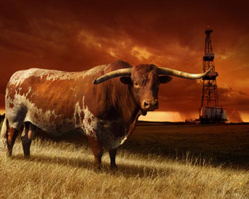 OIL FIELD HORN red