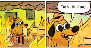 post-64231-this-is-fine-dog-fire-comic-im-n7mp