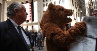 bear-reading-paper