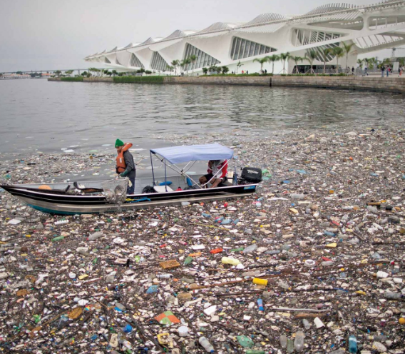 High Levels of Human Sewage Persist at Site of Olympic Water Events