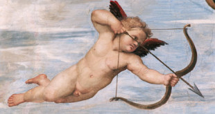 Cupid-detail-from-Raphael-007